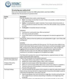 Policy Brief Structure Example