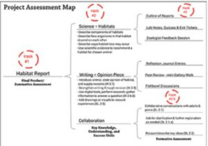 Project Assessment Map