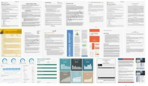 Business Report Examples in PDF, MS Word, Pages, AI