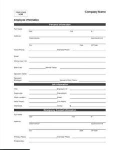 Personal Employee Information Form Example